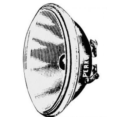 Osculati-PCG_959-Bulbo stagno-20